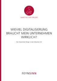 Smart-Factory-Whitepaper_Wieviel-Digitalisierung-FEYNSINN_titel